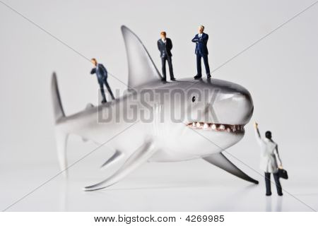 Business Sharks
