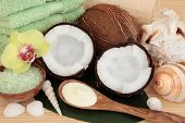 Coconut spa products with body moisturiser, green bath salts, exfoliating scrub, towels and sea shells over bamboo and leaf background. poster