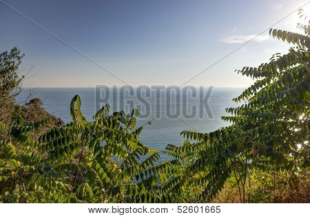 View Over The Sea