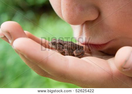 Child kissing a frog
