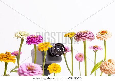 Flower Surveillance