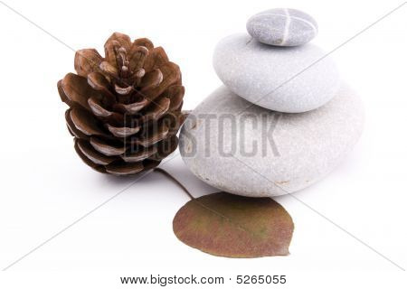Kstones,leaves And Cones On A White Background