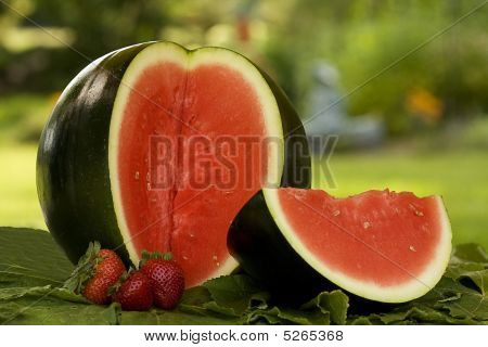 Watermellon And Slice