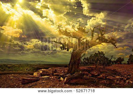 Light streams into rocky desert scene