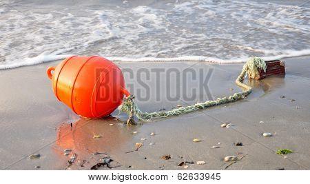 Boyko on the beach