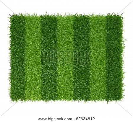 football grass field