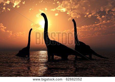 Brachiosaurus At Sunset