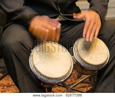 Musician Playing The Bongos