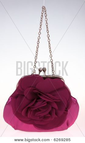 Elegant Ladies Handbag.
