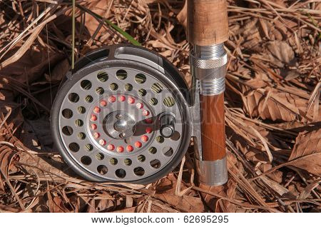 Old Fly Reel