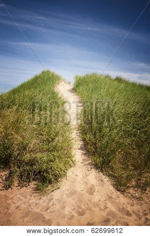 Sand path over dunes with beach grass in North Rustico, Prince Edward Island, Canada. poster