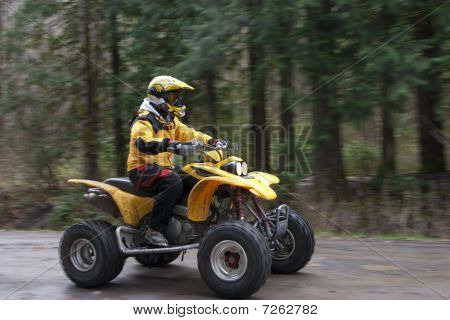One woman riding an ATV on a logging road in the forest poster