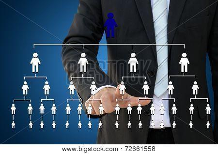 Business hand touching organization chart