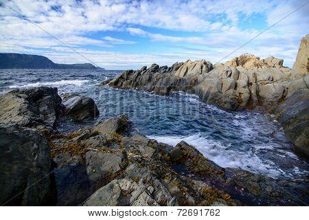 Rugged Newfoundland Coast