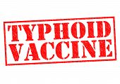 TYPHOID VACCINE red Rubber Stamp over a white background. poster