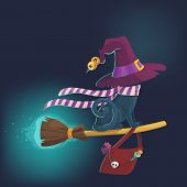 Black terrible witch Halloween cat on a broom sticks vector poster