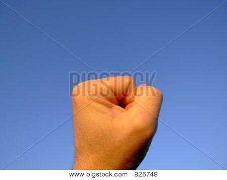 Hand series : fist