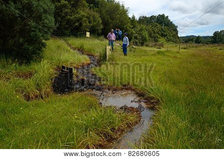 Oil Seep Inspection