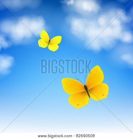 Butterfly And Sky With Gradient Mesh, Vector Illustration