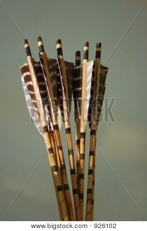 Native American Arrows