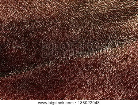 Abstract Color Leather Texture.