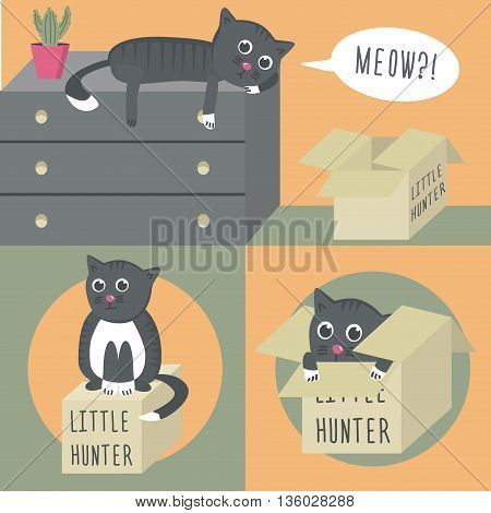 The cat on the dresser, opened a box standing on the floor. Little hunter. The cat in the box and on the box. Vector illustration.