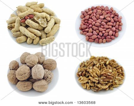 Nuts, Seeds & Appetizers Set #1