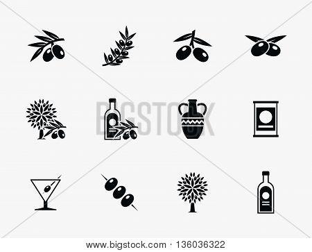 Olive oil vector icons. Olive leaf, olive branch, nature olive tree illustration