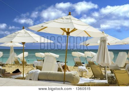 white umbrellas shade this tropical caribbean resort beach poster