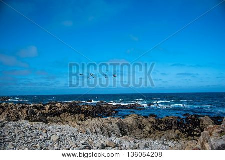 Scenic rocky coastline along the historic 17 Mile Drive in Pebble Beach California.