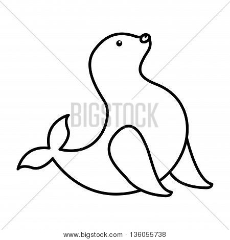 seal animal isolated icon design, vector illustration  graphic