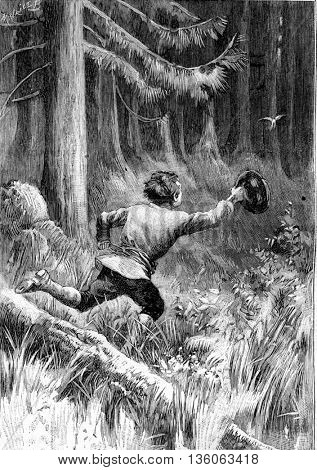 Child running after a bird in the forest. From Jules Verne Cesar Cascabel, vintage engraving, 1890.
