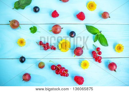 Ripe summer berries and flowers, black and red currant, gooseberry, raspberry,  green peppermint leaves and yellow chamomiles on painted blue wooden background