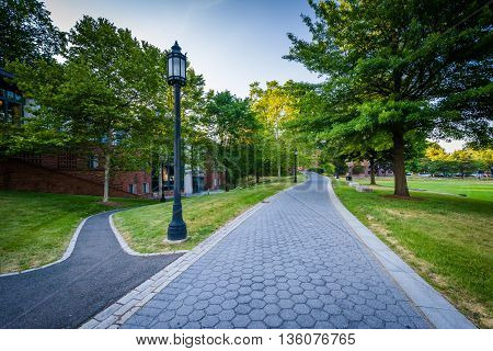 Walkways At Trinity College, In Hartford, Connecticut.