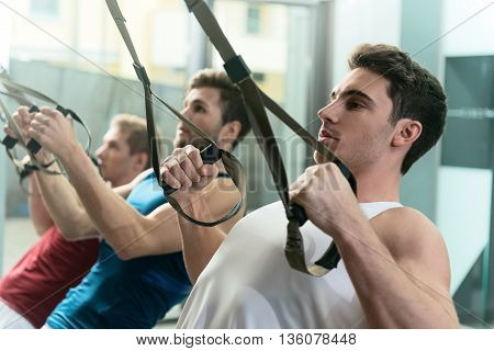 Strong young men are exercising in group. They are doing push-ups with trx straps. Men are standing and looking forward confidently
