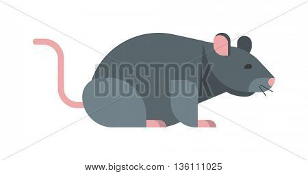 Rat mouse vector illustration.