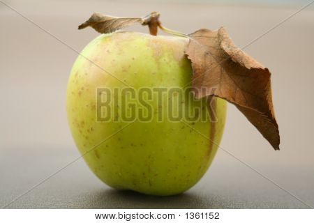 Green And Gold Apple