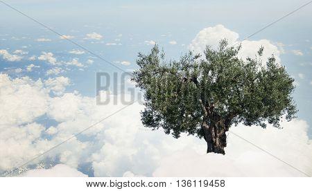 Green growing tree . Mixed media