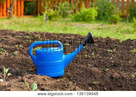 Blue plastic watering can in the background and the garden beds. summer in the garden outdoors. Bright equipment care crop
