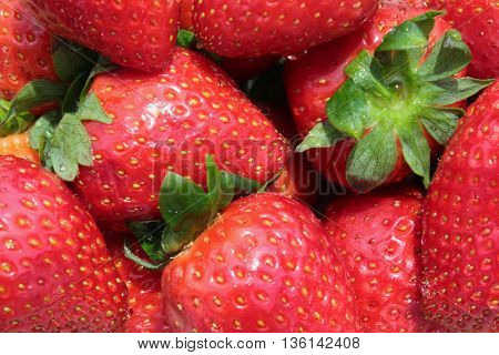 Image of bunch of fresh delicious strawberries.