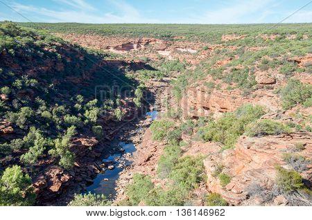 Sandstone rock and native flora line the Murchison River Gorge in the Z-bend native bushland landscape under a clear blue sky in Kalbarri National Park in Western Australia.