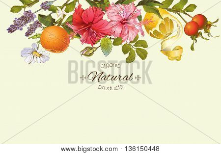 Vector vintage natural banner with hibiscus flowers, citrus fruits and rose hip. Design for tea, juice, natural cosmetics, baking, candy and sweets, grocery, health care products. With place for text.