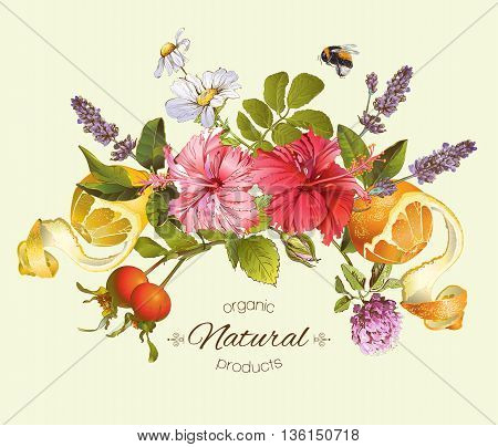Vector natural composition with hibiscus flowers, citrus fruits and rose hip. Design for tea, juice, natural cosmetics, baking, candy and sweets, grocery, health care products. With place for text.
