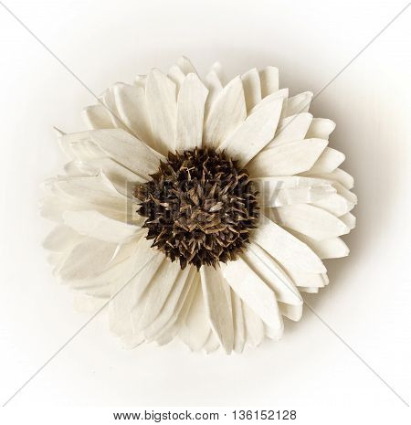 A photo of a dry white flower used for scenting rooms on white background
