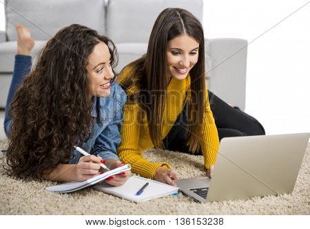 Beautiful teenage friends studying together at home