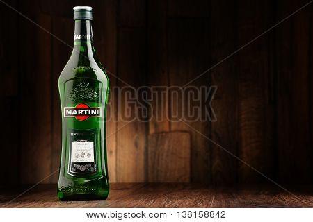 Bottle Of Martini Dry