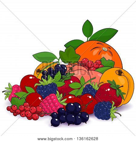 Juicy Summer Fruits and Berries, Fresh Eco Fruits, Healthy Food Concept ,Natural Organic Concept, Fruits Isolated on White Background ,Vector Illustration