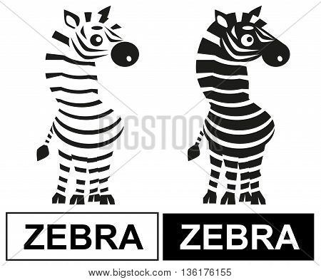 illustration of a Zebra striped animal on a white background and the inscription