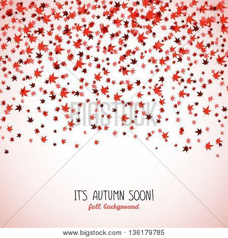 Text frame made from red maple leaves. Fall is coming. Copy space. Background of autumn leaves. Momiji. Frame for text. Autumn concept. Vector illustration.