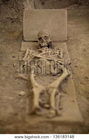 Human skeleton lying in the grave Archaeological site.